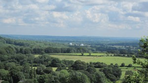 View Towards Weald from Selborne Common