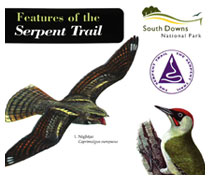 Serpent Trail Field Guide